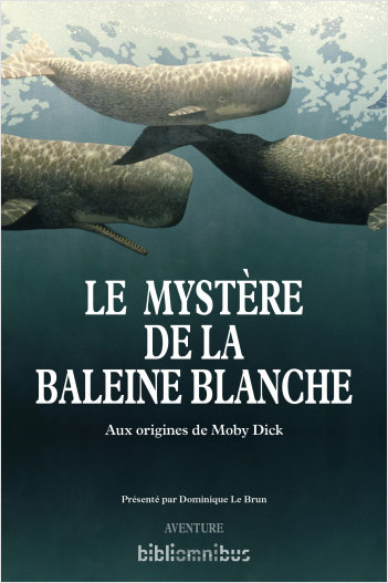 Le mystère de la baleine blanche