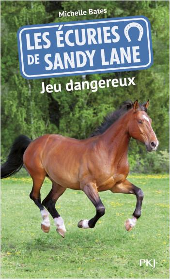 6. Les écuries de Sandy Lane : Jeu dangereux