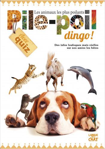 Pile-Poil Dingo !